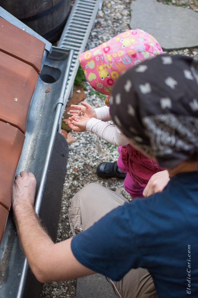 photographe alsace famille bébé cailloux