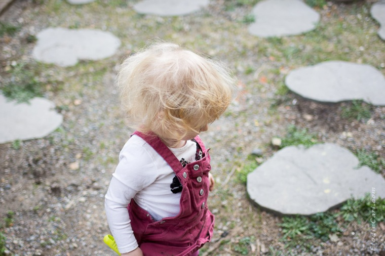 photographe alsace famille bébé dalles