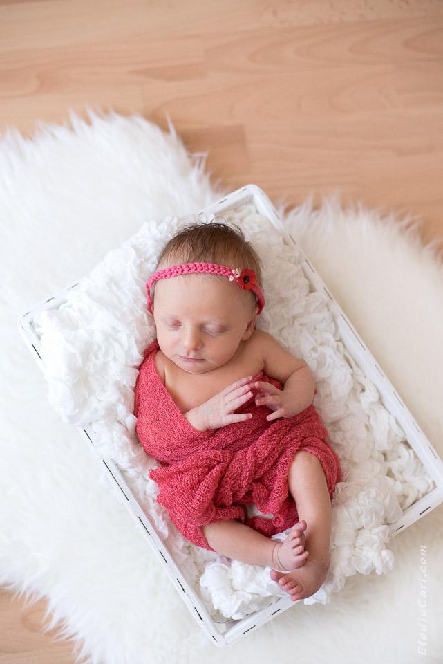 photographe alsace haut-rhin bébé nouveau-né naissance bébé fille